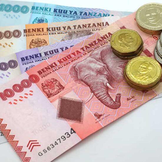 Tanzania Currency