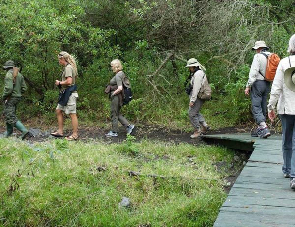 Arusha National park walking safari