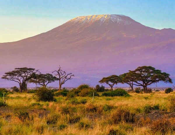 kilimanjaro climb| Machame Route